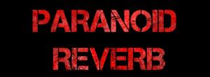 Συνέντευξη Με Τους Paranoid Reverb